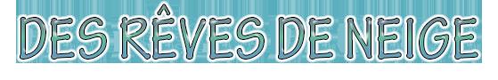 Des Rêves De Neige : Petit élevage de Sibérians Huskys